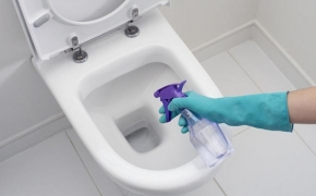 Toilet Bowl cleaning Perth
